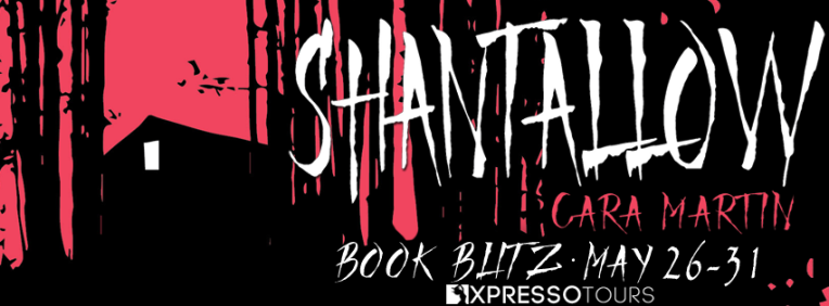 ShantallowBlitzBanner-1.png